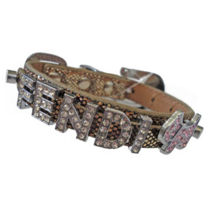 stylish dog collars