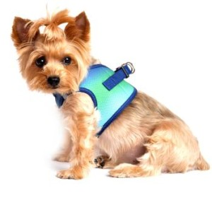 american-river-dog-harness-ombre-collection-northern-lights-2