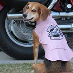 biker-dawg-motorcycle-dog-jacket-pink-6892