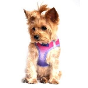 american-river-dog-harness-ombre-collection-raspberry-sundae-9343