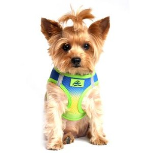 American River Dog Harness Ombre Collection -Cobalt Sport