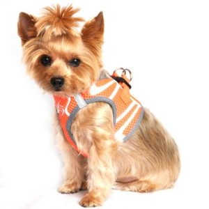 American River Dog Harness Ombre Collection - Iridescent Orange