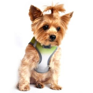 American River Dog Harness Ombre Collection -Limestone Gray