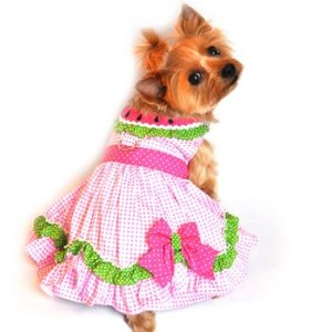 Dog Dress - Watermelon