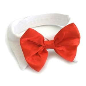 Doggy Red Satin Bow Tie and Collar