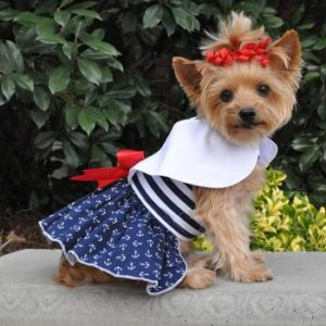 nautical-dog-dress-with-matching-leash-5801