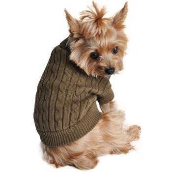 dogsweatergrn