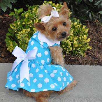 blue-polka-dot-dog-dress-with-matching-leash-1085