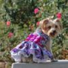 purple-red-floral-dress-with-matching-leash-2074