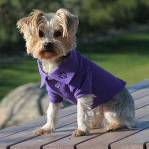 solid-dog-polos-ultra-violet-6773