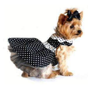 polka-dot-dog-dress-with-leash-black-white-1