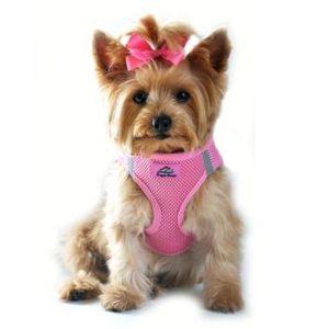 Solid Ultra Choke Free Dog Harness